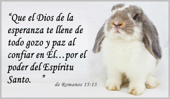 Romanos 15:13 Tarjeta